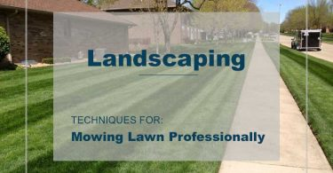 Lawn Mowing Professionally