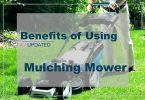Mulching Benefits Lawn Mowing