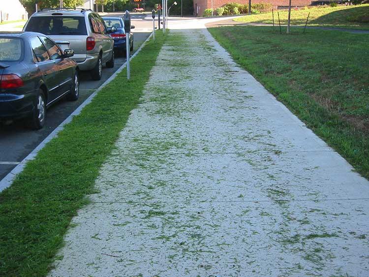 lawn clipping on sidewalk